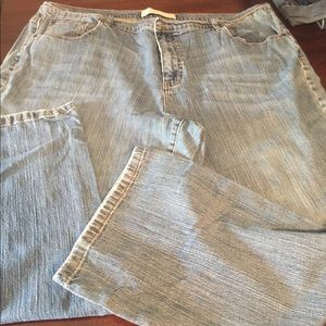 Low rise boot cut jean plus size 26 Average